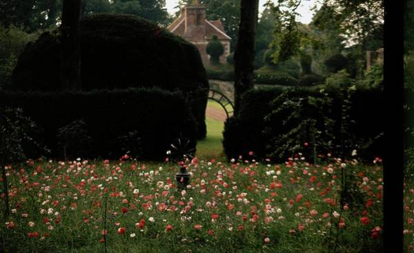 Countryside Photograph - Wild Flowers At Reddish House by Cecil Beaton