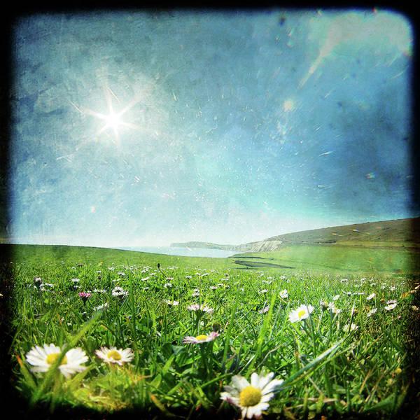 Jason Day Photograph - Wild Flowers Field by S0ulsurfing - Jason Swain