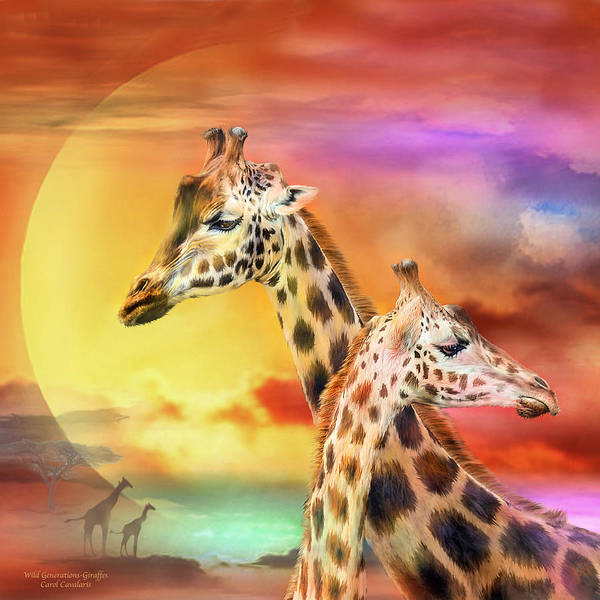 Mixed Media - Wild Generations - Giraffes  by Carol Cavalaris