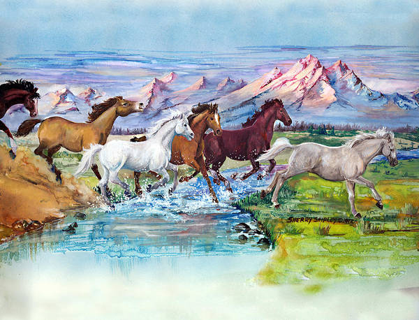 Painting - Wild Horses by Sherry Shipley
