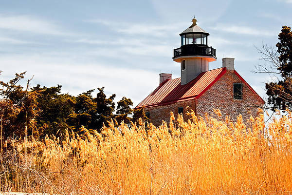 Photograph - Wild Lighthouse by Kristia Adams