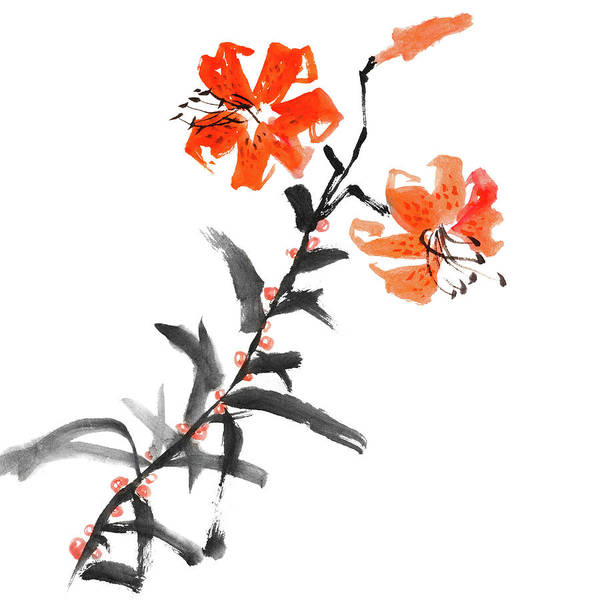 Calligraphy Digital Art - Wild Lily Flowers by Vii-photo