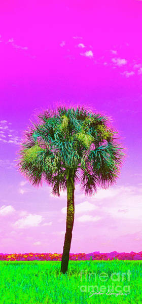 Digital Art - Wild Palm 4 by John Douglas