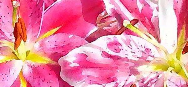 Photograph - Wild Pink by Steven Huszar