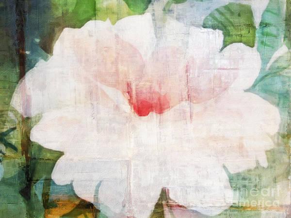 Painting - Wild Rose by Lutz Baar