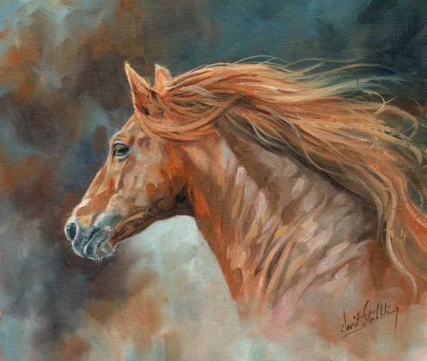 Horse Head Painting - Wild Stallion by David Stribbling