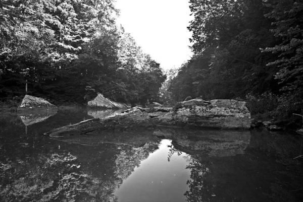 Photograph - Wild Stream Wat 237 by G L Sarti