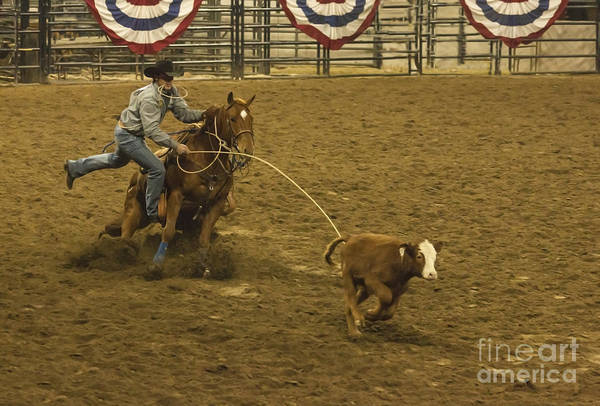 Prca Wall Art - Photograph - Wild West Calf Roping by Janice Pariza