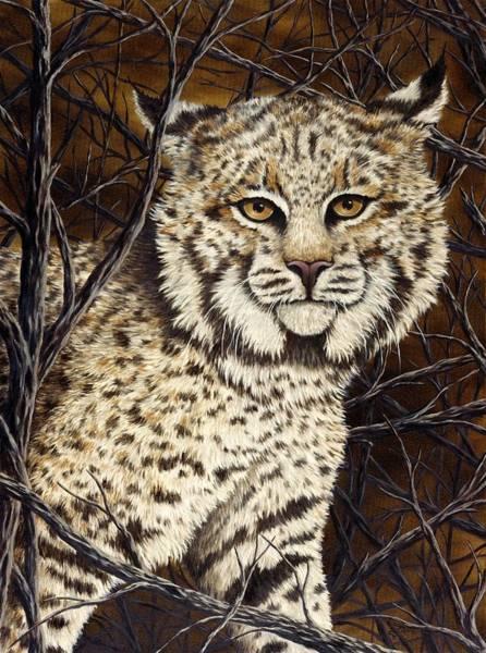 Predator Painting - Wildcat by Rick Bainbridge