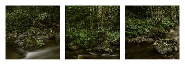 Photograph - Wilde Gutach Triptych by Alexander Kunz
