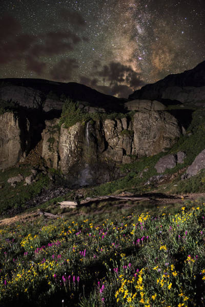 Silverton Photograph - Wildflower Nightscape In Porphyry Basin by Mike Berenson