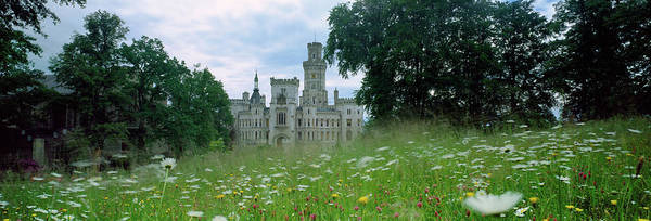 Wall Art - Photograph - Wildflowers In A Field With A Castle by Panoramic Images