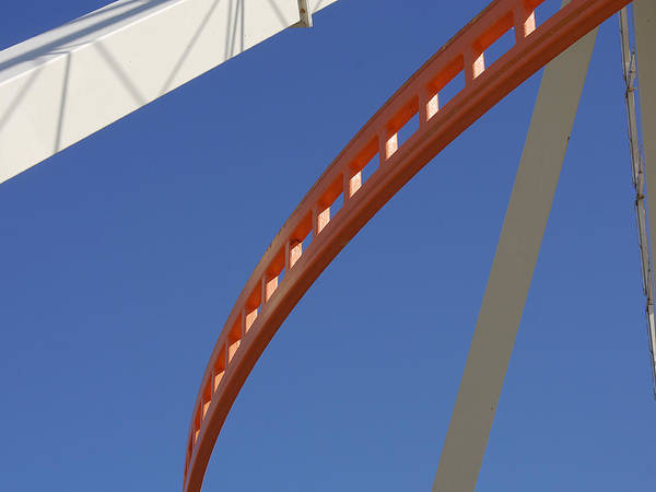 Photograph - Wildwood - Curves I by Richard Reeve
