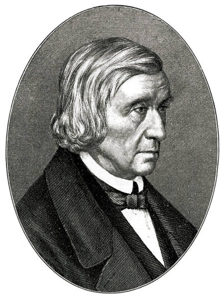 Wall Art - Drawing - Wilhelm Carl Grimm  German Philologist by Mary Evans Picture Library