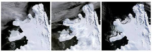 Disintegrate Photograph - Wilkins Ice Shelf Break-up by Nasa/science Photo Library