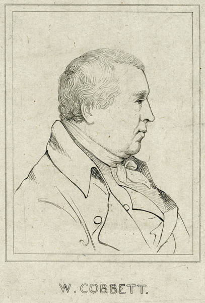 Wall Art - Drawing - William Cobbett (1762 - 1835) by Mary Evans Picture Library