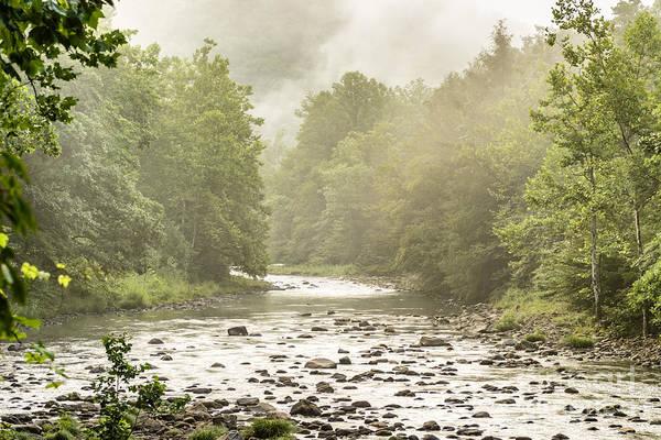 Trout Stream Photograph - Williams River Summer Mist by Thomas R Fletcher