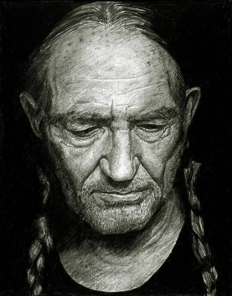 Drawing - Willie by William Underwood