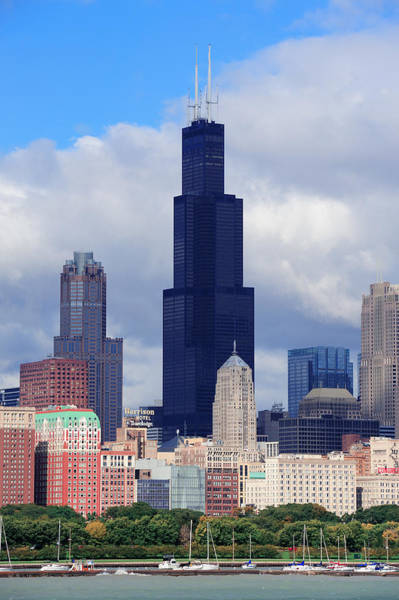 Photograph - Willis Tower In Chicago by Songquan Deng