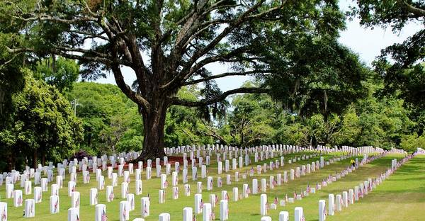 Photograph - Wilmington National Cemetery by Cynthia Guinn
