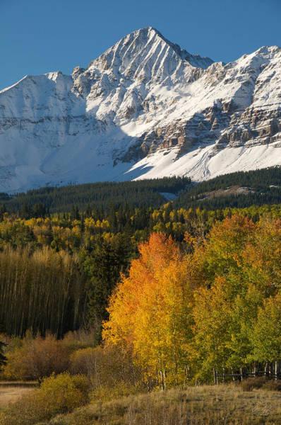 Wall Art - Photograph - Wilson Peak Vertical by Aaron Spong