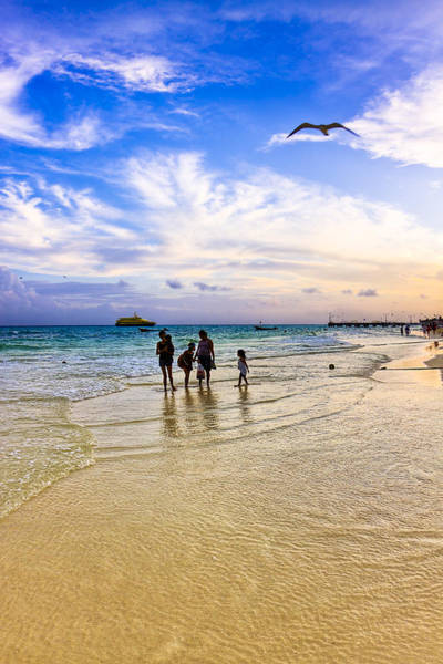 Photograph - Wind Beneath My Wings On Playa Del Carmen by Mark E Tisdale