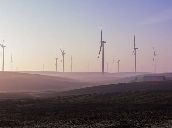 Photograph - Wind Farm At Dawn by Wes Jimerson