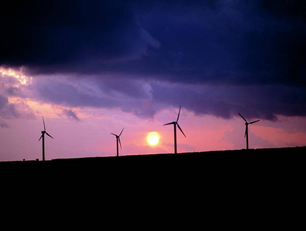 Wind Farm Photograph - Wind Farm At Delabole In Cornwall by Martin Bond/science Photo Library