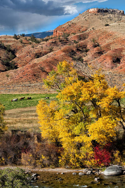 Bishop Hill Photograph - Wind River Horse Ranch In Autumn by Kathleen Bishop