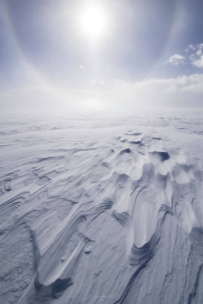 Antartica Wall Art - Photograph - Wind-scoured Snow And Solar Halo by Grant Dixon