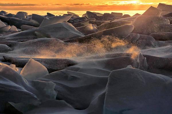 Photograph - Wind-swept And Half-lit by Leda Robertson