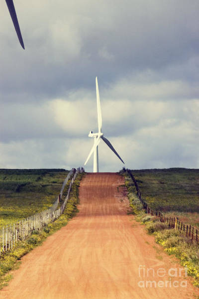 Electricity Generation Photograph - Wind Turbine And Red Dirt Road by Colin and Linda McKie