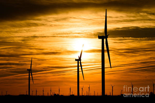 Electrical Field Wall Art - Photograph - Wind Turbine Farm Picture Indiana Sunrise by Paul Velgos