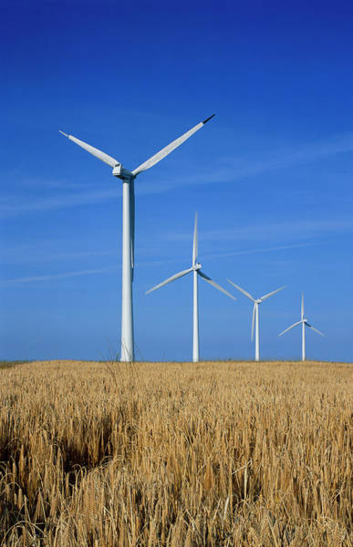 Wind Farm Photograph - Wind Turbines by Alex Bartel/science Photo Library