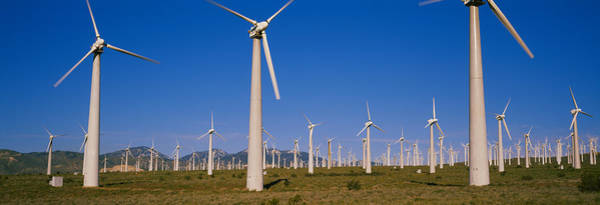 Mojave Photograph - Wind Turbines In A Field, Mojave by Panoramic Images