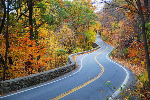 Photograph - Winding Autumn Road With Colorful Foliage by Songquan Deng
