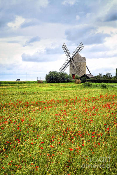 Wall Art - Photograph - Windmill And Poppy Field In Brittany by Elena Elisseeva
