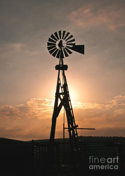 Photograph - Windmill At Sunrise by Mae Wertz