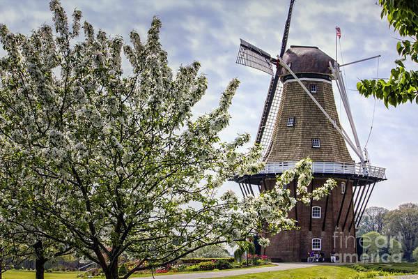 Holland Mi Digital Art - Windmill At Windmill Gardens Holland by Georgianne Giese