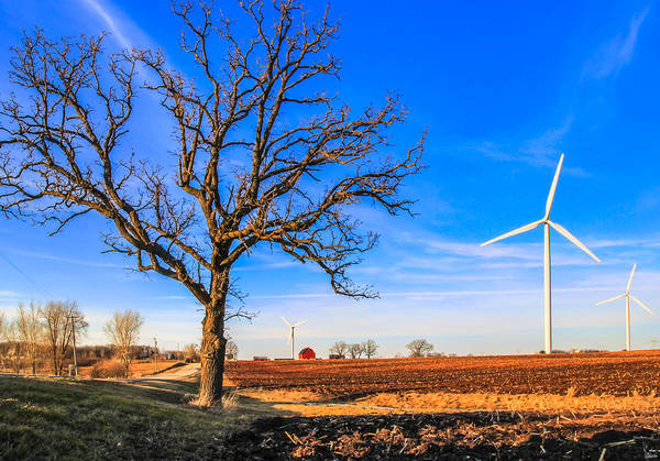 Wall Art - Photograph - Windmill Country by Anna-Lee Cappaert