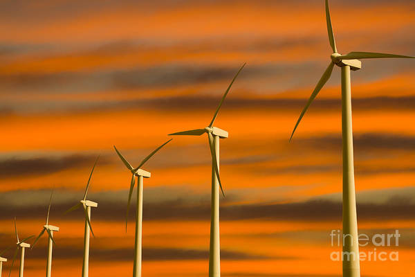 Photograph - Windmill Farm by Photography by Laura Lee