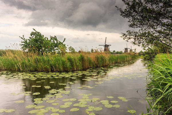 Photograph - Windmills By The Canal by Susan Leonard