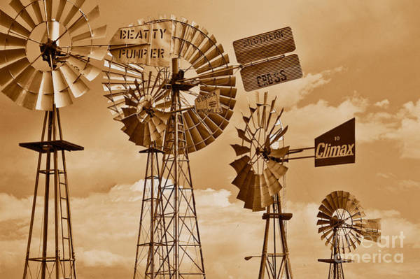 Photograph - Windmills In Sepia by Mae Wertz