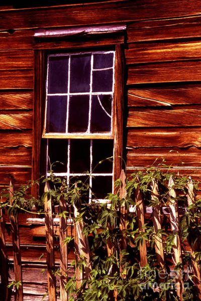 Photograph - Window And Ivy by Paul W Faust -  Impressions of Light