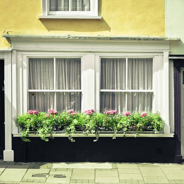 Trough Wall Art - Photograph - Window Garden by Tom Gowanlock