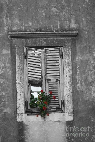 Wall Art - Photograph - Window In Dubrovnik by Aston Pershing