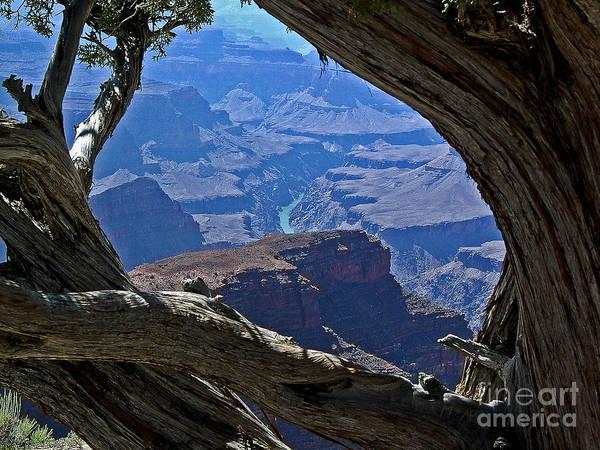 Photograph - Window In Time by John Zawacki