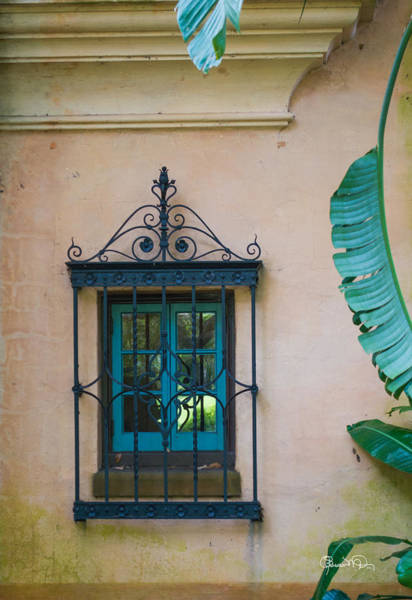 Photograph - Window To The Past by Susan Molnar