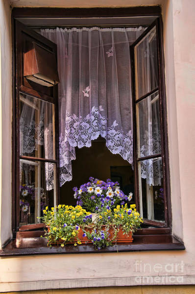 Photograph - Window With Lace by Brenda Kean