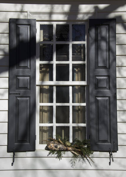Royal Colony Photograph - Windows Of Williamsburg 09 by Teresa Mucha